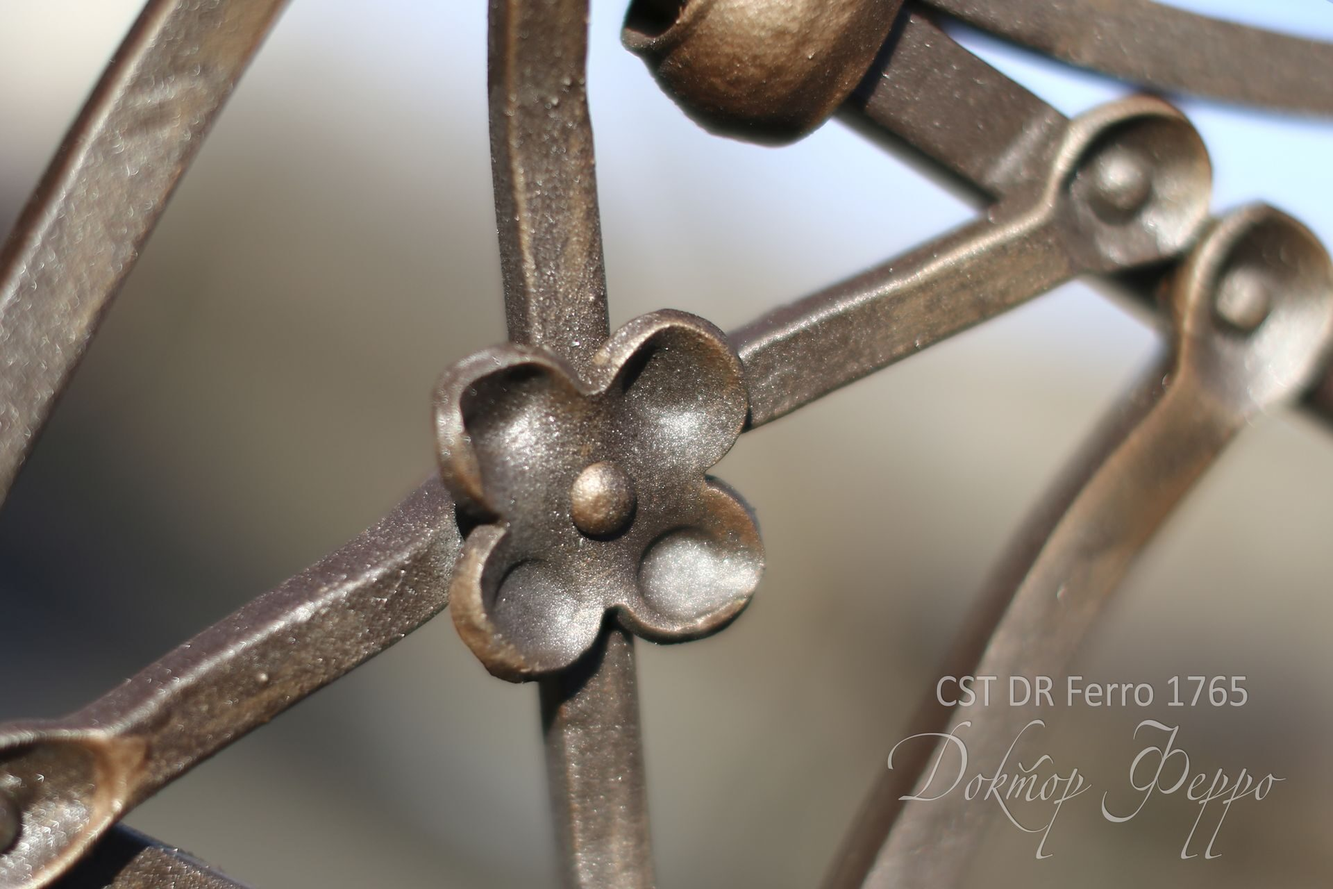 Foto braccio di ferro 54